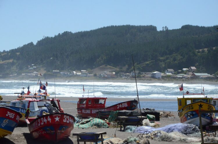 charming fishing town in Chile